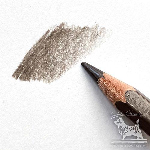 Caran d'Ache Pablo - 404 Brownisch beige
