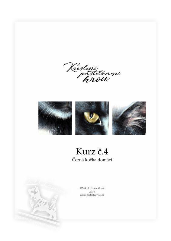 Výukový sešit č. 4 - Černá kočka domácí